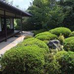 丈山苑で日本庭園を眺めながら抹茶をいただく
