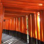 大混雑の京都伏見稲荷大社で子連れ初詣!圧巻の千本鳥居に感激