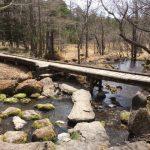 GW蓼科ふれあい牧場&ゴンドラに乗って御泉水自然園で自然散策