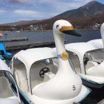 白樺湖でボート遊び!料金や乗り場はこのようになっています