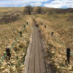 車山高原、子連れハイキングレポ②山頂から車山湿原へ&スカイプラザで昼食